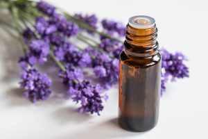 Lavender Essential Oil Lacey Massage Therapy